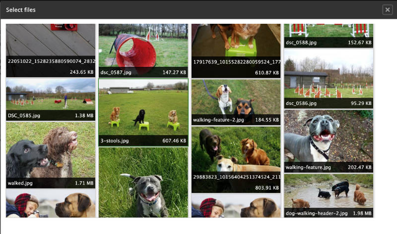 The image library of a Drupal CMS system, where reusable site images can be located.